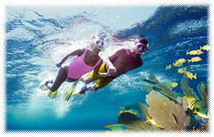 Snorkeling, Scuba diving, deep sea fishing, it is all here in Cancun awaiting for you